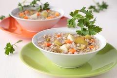 汤用酱瓜和大麦 免版税库存图片