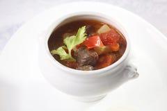 汤用在罐的肉 库存图片