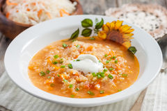 汤用德国泡菜和小米 免版税库存图片