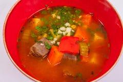 汤用牛肉和菜 免版税库存照片