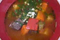 汤用牛肉和菜 库存图片