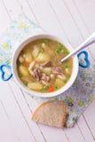 汤用肉和菜 图库摄影