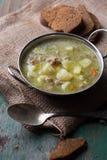 汤用肉和菜 免版税图库摄影