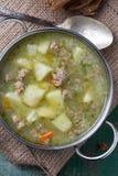 汤用肉和菜 库存图片