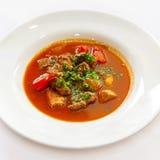 汤用肉胡椒和绿色 免版税库存照片
