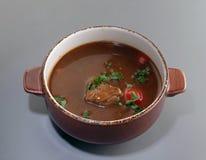 汤用肉 图库摄影