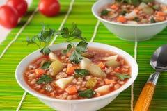 汤用酱瓜、大麦和在碗的番茄酱 图库摄影