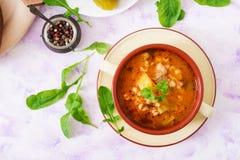 汤用酱瓜和大麦米-在轻的背景的rassolnik 免版税图库摄影