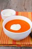 汤用黄瓜酸奶 库存照片
