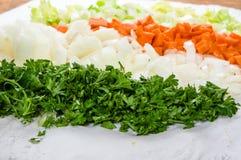 汤的准备用红萝卜、葱和芹菜 免版税库存图片