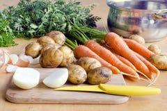 汤的未加工的蔬菜 免版税库存照片