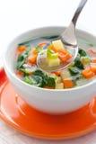 汤蔬菜 图库摄影