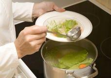 汤蔬菜 库存照片