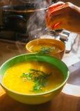 汤调味料 库存照片