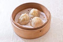 汤饺子, Xiaolongbao 免版税库存照片