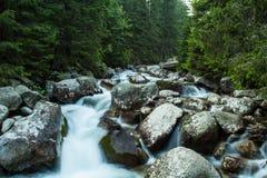 汩汩地流的山小河 库存照片