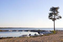 汽艇在湖停泊了在杉树附近 图库摄影