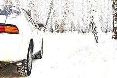 汽车冬天路雪森林游览 免版税图库摄影