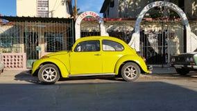 汽车在哈瓦那 免版税库存图片