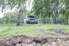 汽车在森林里停放 免版税库存照片