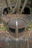 汽车在森林4 库存照片