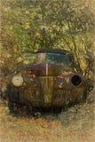 汽车在森林 库存图片