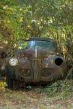 汽车在森林 库存照片