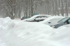 汽车在随风飘飞的雪离开 蓝色分行休息日霜谎言天空雪结构树冬天 免版税库存图片