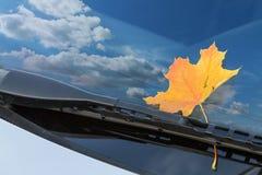 汽车挡风玻璃 库存图片