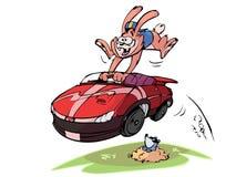 汽车斋戒兔子 库存例证