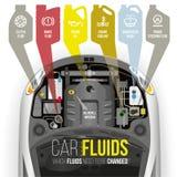 汽车的技术流体 库存图片