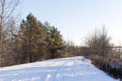 汽车的踪影在雪的 库存照片