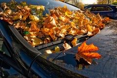 汽车秋叶刮水器敞篷汽车细节身体秋天桔子 免版税库存照片