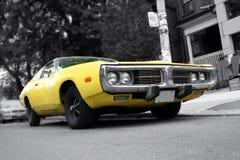 汽车肌肉 库存照片