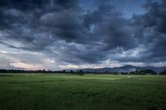 汽车覆盖黑暗的轮渡表单风雨如磐的视图 免版税图库摄影