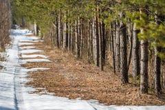 汽车足迹在一条熔化的雪路消失 图库摄影