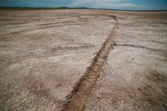 汽车轨道在凋枯的盐湖 免版税库存照片