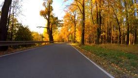 汽车驱动在与秋天的秋天上色了树 影视素材