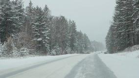 汽车驱动通过暴风雪的森林 看法通过挡风玻璃 慢的行动 股票视频