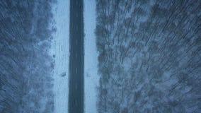 汽车鸟瞰图在穿过飞雪的冬天森林的路的 股票录像