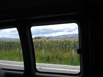 从汽车更大的视域的玉米 库存图片