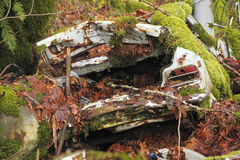 汽车击毁和自然 库存图片
