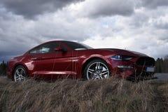 汽车Ford Mustang的内部和仪器2018年 免版税库存图片