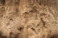 沃土的山沟墙壁的特写镜头作为环境纹理背景 图库摄影
