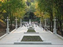 沃罗涅日市中央公园,其中一个胡同 库存图片