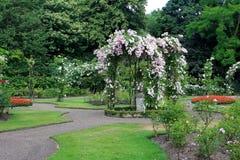 沃里克城堡的玫瑰园 免版税库存图片