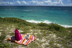 沃里克龙湾,百慕大海滩 库存图片