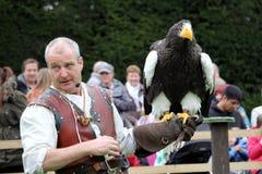 沃里克,英国- 2017年9月17日:有他的Stellers Se的一个以鹰狩猎者 免版税库存照片