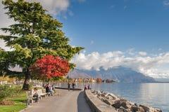 沃韦,瑞士- 2015年10月29日:堤防风景在沃韦,沃州小行政区  库存图片