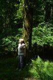 沉思妇女在一个厚实的绿色森林里 免版税库存照片